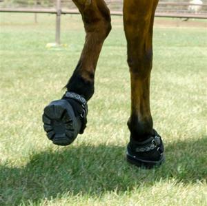 Boots, Wraps & Hobbles